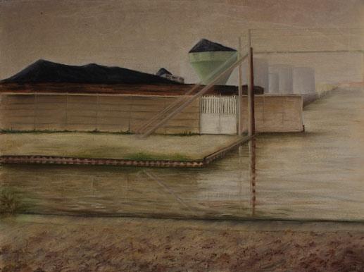 50 x 65 cm, pastels, 1992
